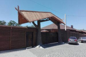 Ворота 1005